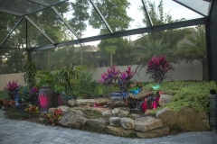 Water Feature & Pond Combo