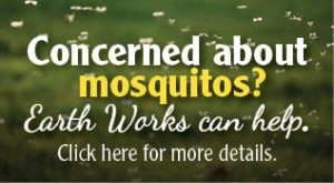 concerned about mosquitos image