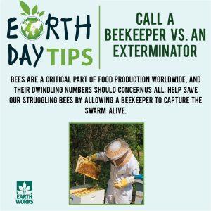 Call A Beekeeper versus an exterminator
