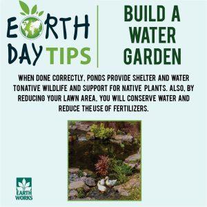 Build A Water Garden