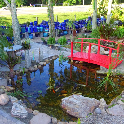 Protect Your Pond Fish From Summer Heat