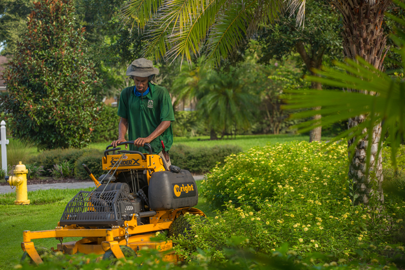 MAY LAWN AND GARDEN TIPS FOR NORTHEAST FLORIDA