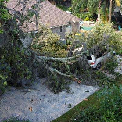 damage from heavy rain